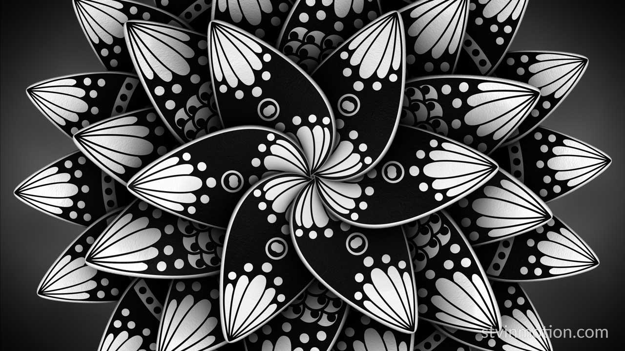 Black and white Lotus mandala
