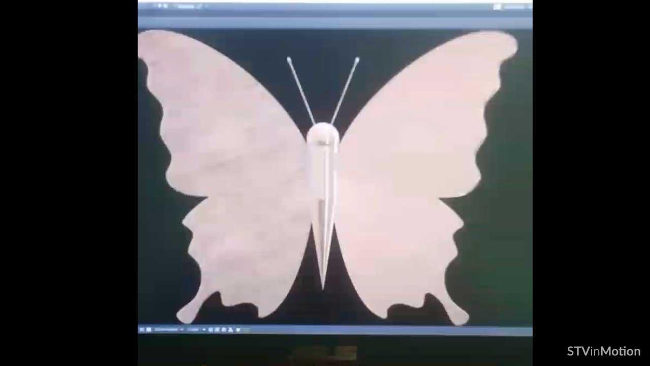 Making a 3D Butterfly model